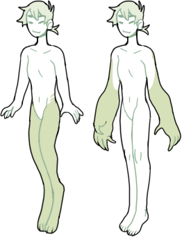 human-distribution-limbs.png