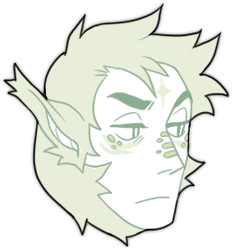 leyr-head-front.png